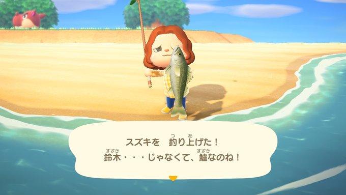あつまれどうぶつの森 鱸を釣り上げた
