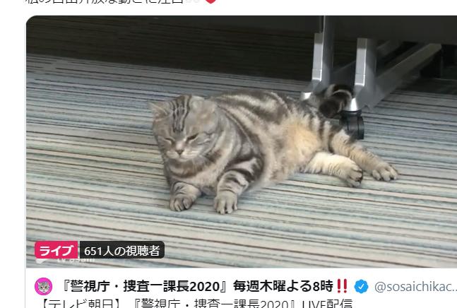 一 課長 猫 捜査
